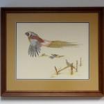 "PHEASANTSLinda Cullers, AmericanOriginal pen and Ink28"" x 25""framed $725"